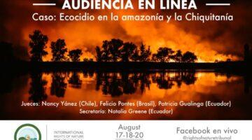 Audiencia en Linea TIDN 2020